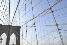 [760] Puente de Brooklyn (7)